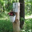 標柱/自然保護柱