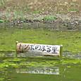 公園/ビオトープ標柱