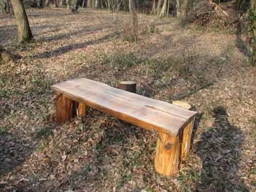 風倒木で半丸太ベンチ