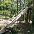竹滑り台の竹取替