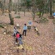 落ち葉のじゅうたん冒険林