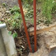 障害木で修景柱-2