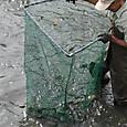 魚取り網-2