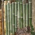 竹管楽器-3