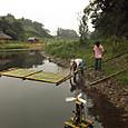 竹の筏-2