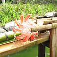 子ども水場の竹樋に水車