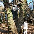 木の又登り