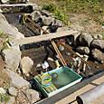 子供水場に魚水槽
