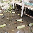 子供水場/竹の飛び石