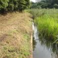 調整池で旧水田水没