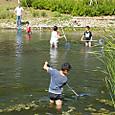 魚取り体験会-6