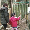 冒険林/竹管楽器
