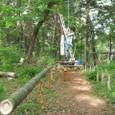 冒険林/ロープウエー仕切り柵
