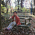 冒険林/ゆらゆら椅子