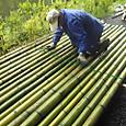 竹の筏作り