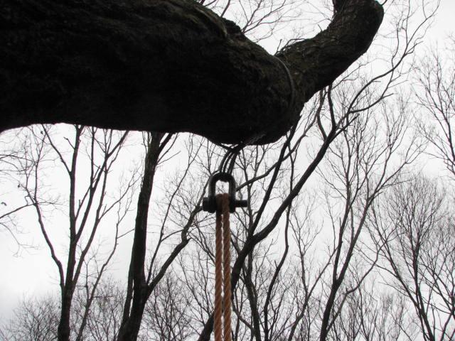 405立ち木ブランコ出来上る: 元気里山日報
